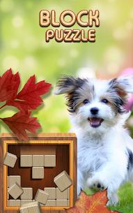 Block Puzzle Wood 1010: Classic Free puzzledom 1