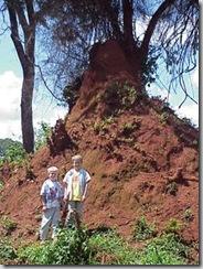 termiteHillNoahBryson