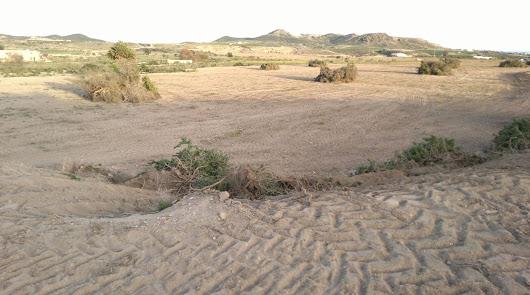 Auge de las excavaciones arqueológicas en Almería pero sin provecho turístico