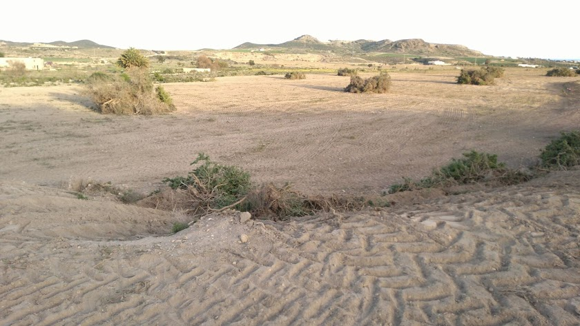 El yacimiento arqueológico romano de El Rozaipón, en la Media Legua de Vera, fue expoliado hace tres años.