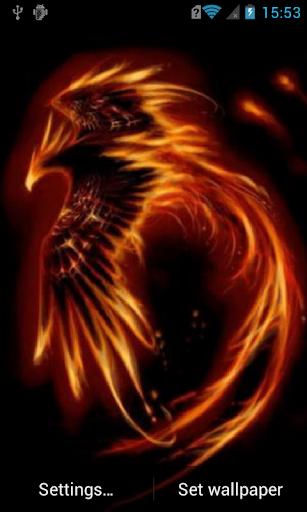Flaming bird Live Wallpaper