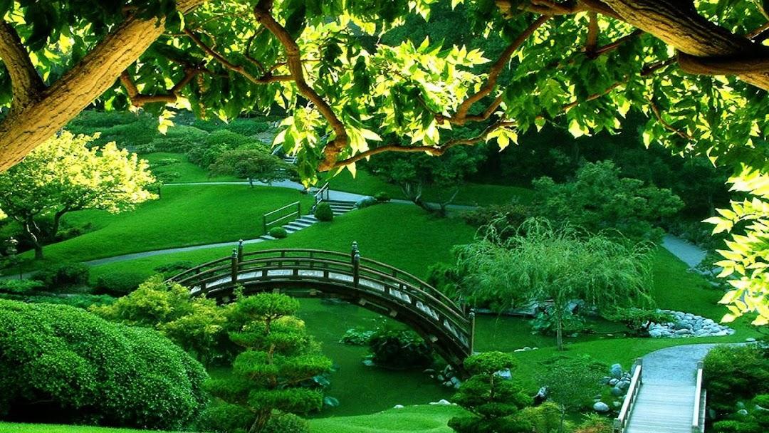 Martin David Landscape Designer Landscape Designer