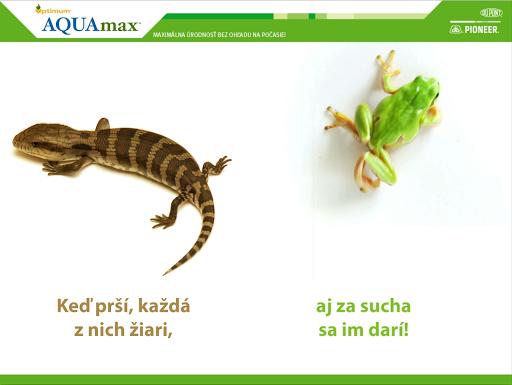 Kukurice Optimum® AQUAmax®