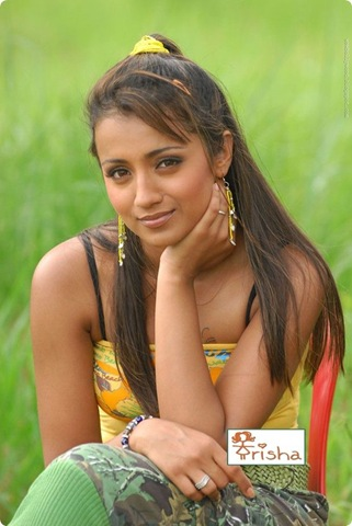 trisha tamil actress hot