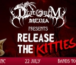 Release the Kitties : Wolmer Bush Lounge