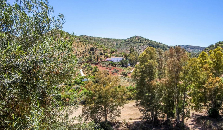 Propriété Malaga