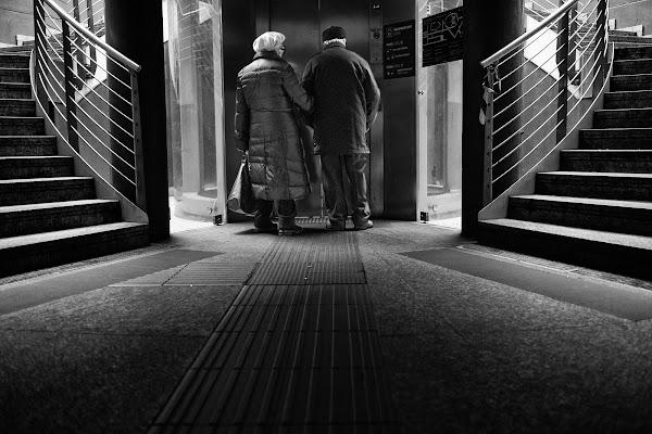 l'ascensore  di wallyci