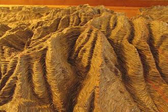 Photo: Closeup of handmade 3D topo map of the Chiricahua mountains, circa CCC days.