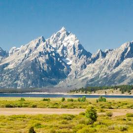 Jackson Lake by Jennifer  Loper  - Landscapes Travel ( jackson lake, grand tetons, snow peaks, jackson lake lodge, clear blue sky, wyoming )
