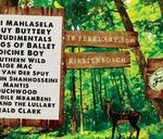 Cape Town Folk 'n Acoustic Music Festival : Kirstenbosch Summer Sunset Concerts