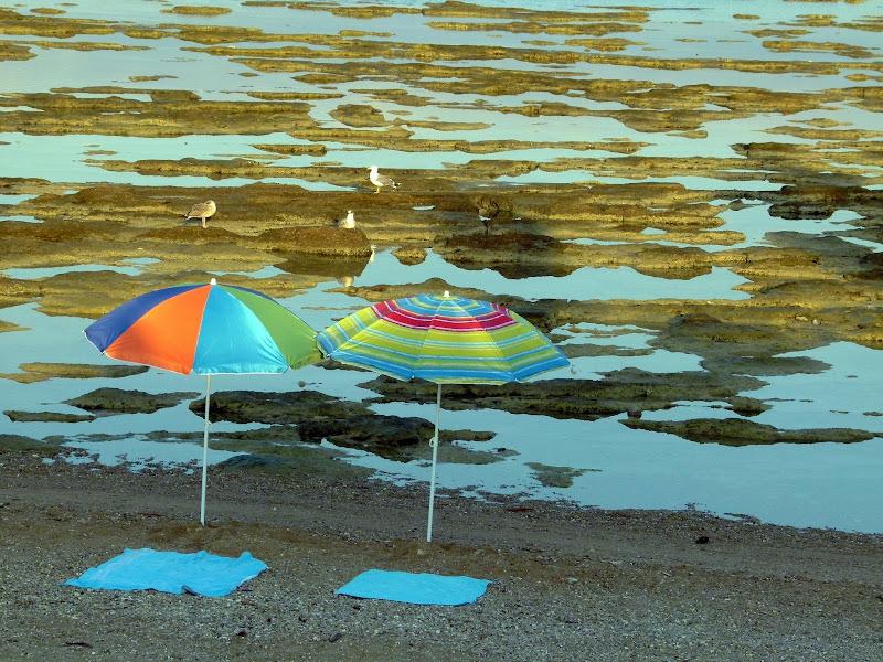 solo due ombrelloni e tre gabbiani di pilotto