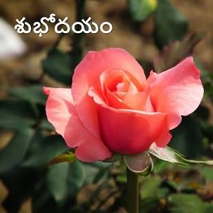 Morning & Night in Telugu - náhled