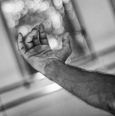 five fingers di  cristina masoni