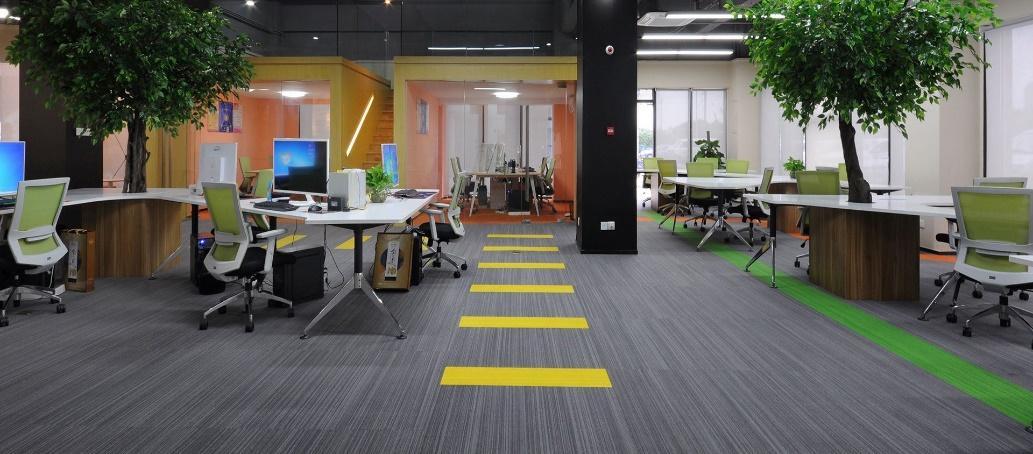 Thảm trải sàn, ghế được sử dụng trong văn phòng