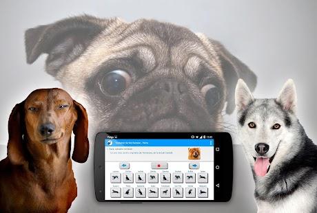 Z člověka na psa překladatel - náhled
