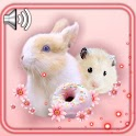 Hamsters and Bunny Cute icon