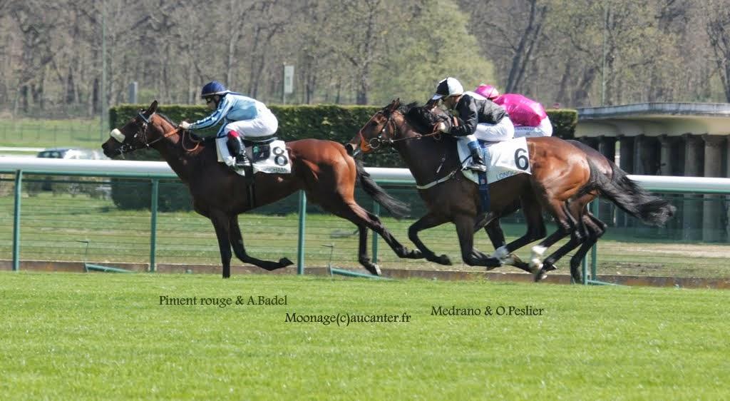 Photos Longchamp 6-04-2015  RkzNblKVHaGofaAY5RWJD2xnDUixj99ioQ4_BfzGfR4H=w1024-h562-no