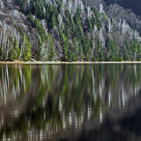 Aqua speculum by Atti Maguran - Landscapes Waterscapes