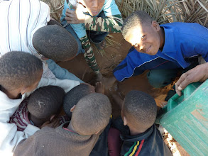 Photo: Children of Zaouia village help with tree planting