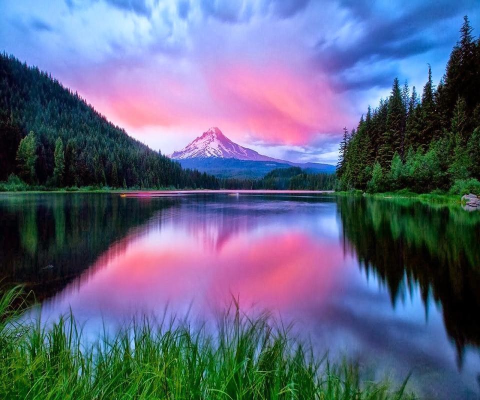 Resultado de imagem para magical nature images