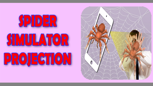 Spider Projection Simulator