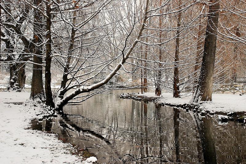 La prima neve di BastetC