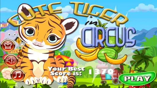 Cute Tiger In Circus