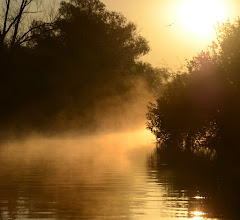 Photo: Danube delta, Romania