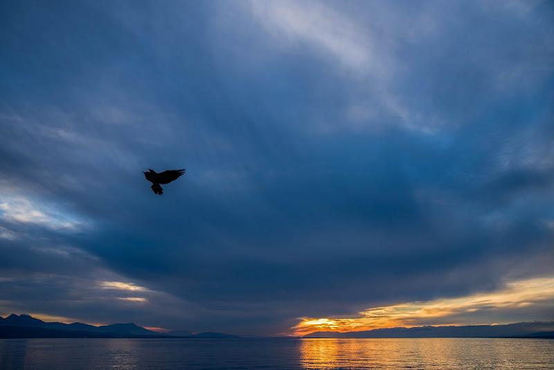 Lac Léman, Lausanne, CH, 2019 di Cristhian Raimondi