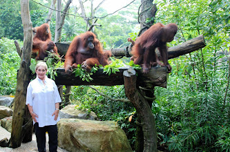 Photo: Us and the Orangs....