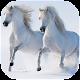Download پازل اسب وحشی For PC Windows and Mac