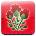 Fond d'écran Rose icon