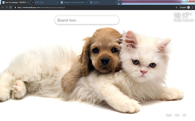 Puppy Wallpaper HD Dogs New Tab Puppies
