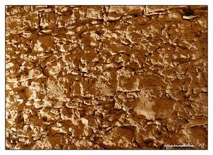 Photo: Stone Wall