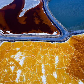 by Terry DeMay - Nature Up Close Water (  )