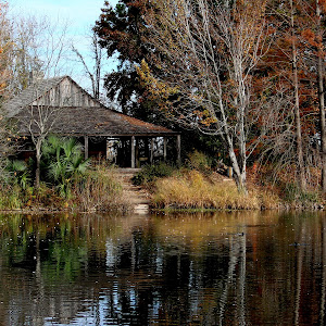 botanical and sunken gardens 039.JPG