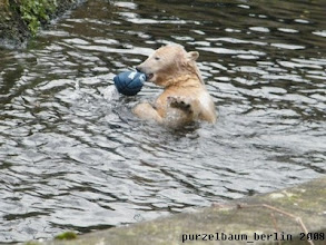 Photo: Wasserspass mit Ball :-)