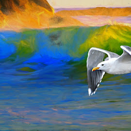 Evening wave by Gaylord Mink - Digital Art Things ( sunset, water, landscape, wave, gull )