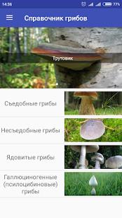Справочник грибов для грибника - náhled