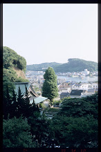 Photo: 乗誓寺 銀杏