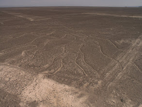 Photo: Nazca lines - this one's a tree.