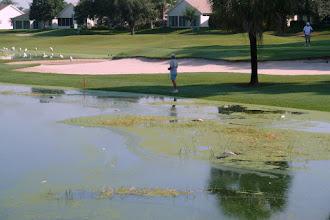 Photo: Randy Disanto surveying dead fish - Lago Santiago - 2011-07-09