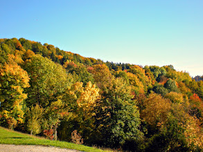 """Photo: WOW We now have """"Golden October""""!!!  Warm sunshine (19°C at lunchtime - photo following), little wind.  View from my living room window a few minutes ago.  +10MinutePhotos #10minutephotos   +PhOtoG Pluss #autumn"""