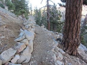 Photo: Hawkins Ridge Trail on the east flank of Middle Hawkins. Fine rockwork by the San Gabriel Mountains Trailbuilders