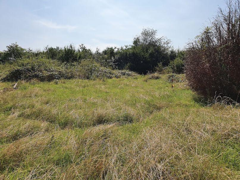 Vente terrain à batir  1207 m² à Essey (21320), 43 000 €