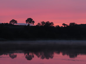 Photo: 25 Jun 13 Priorslee Lake: A calm, hazy and red start to the day (Ed Wilson)