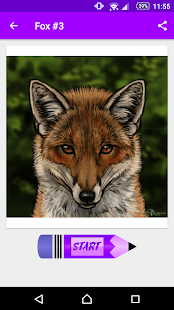 Learn How to Draw Foxes - náhled