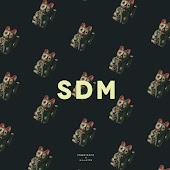 SDM (feat. Gillette)