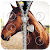 Horse Zipper Lock file APK for Gaming PC/PS3/PS4 Smart TV