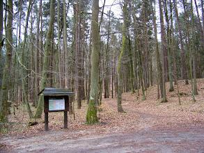 """Photo: Ul. 23 - Marca - Dolina Gołębiewska - szlak """"zielony - Skarszewski"""" kierunek na Skarszewy i Ścieżka Borsuka"""